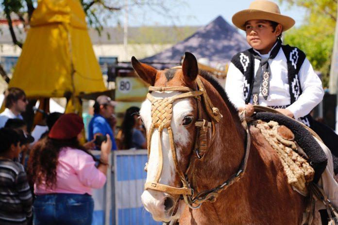 Fiestas Patronales - Gaucho