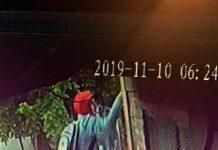 No puede robar vivienda y vehiculo por eso se lleva cámara de seguridad - Altos del Pilar - Pelagio Luna