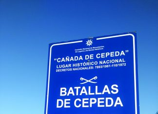 Batalla de Cepeda: La batalla de los diez minutos