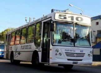 transporte gratuito el domingo de las PASO